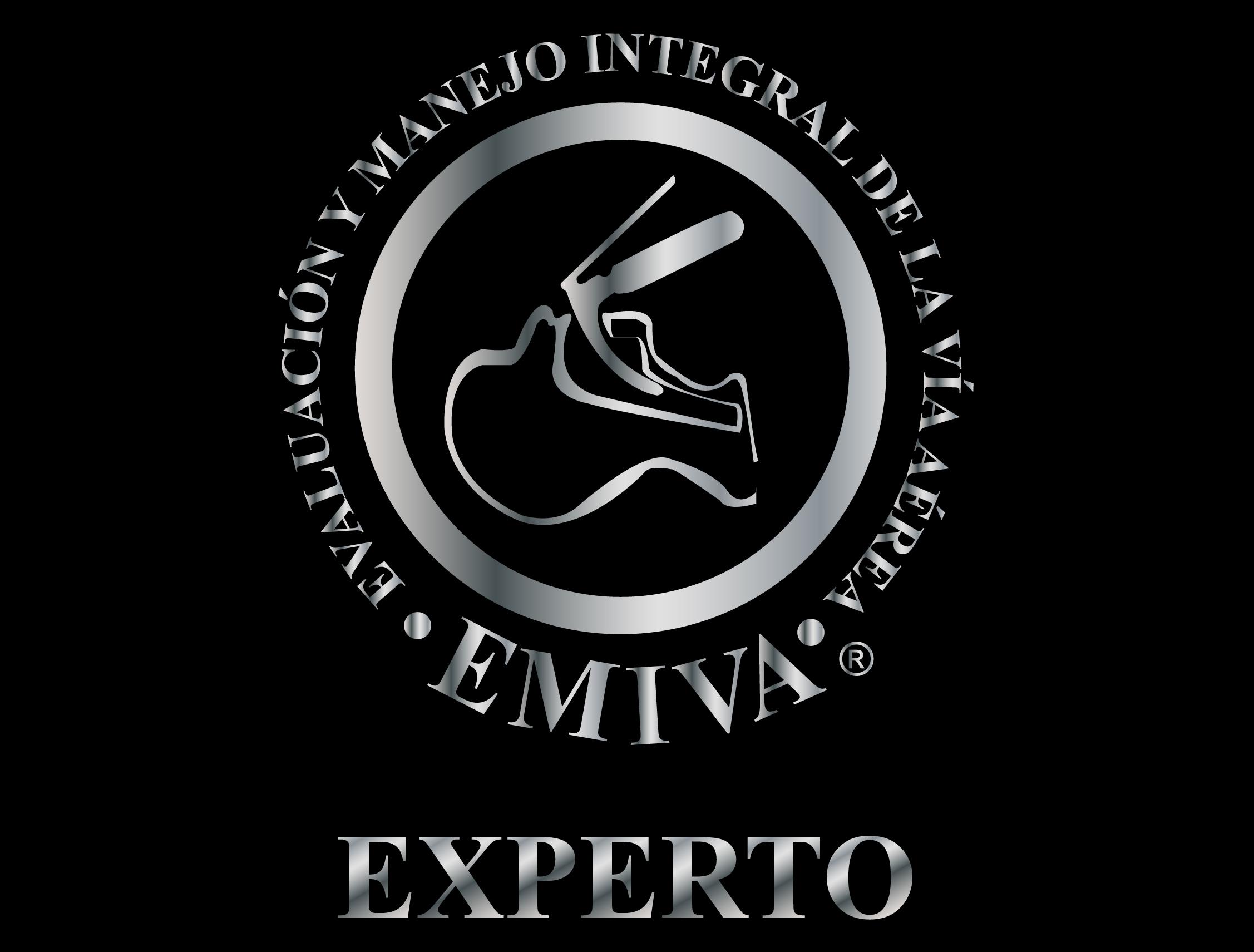Logo-EMIVA-Experto.jpg#asset:283